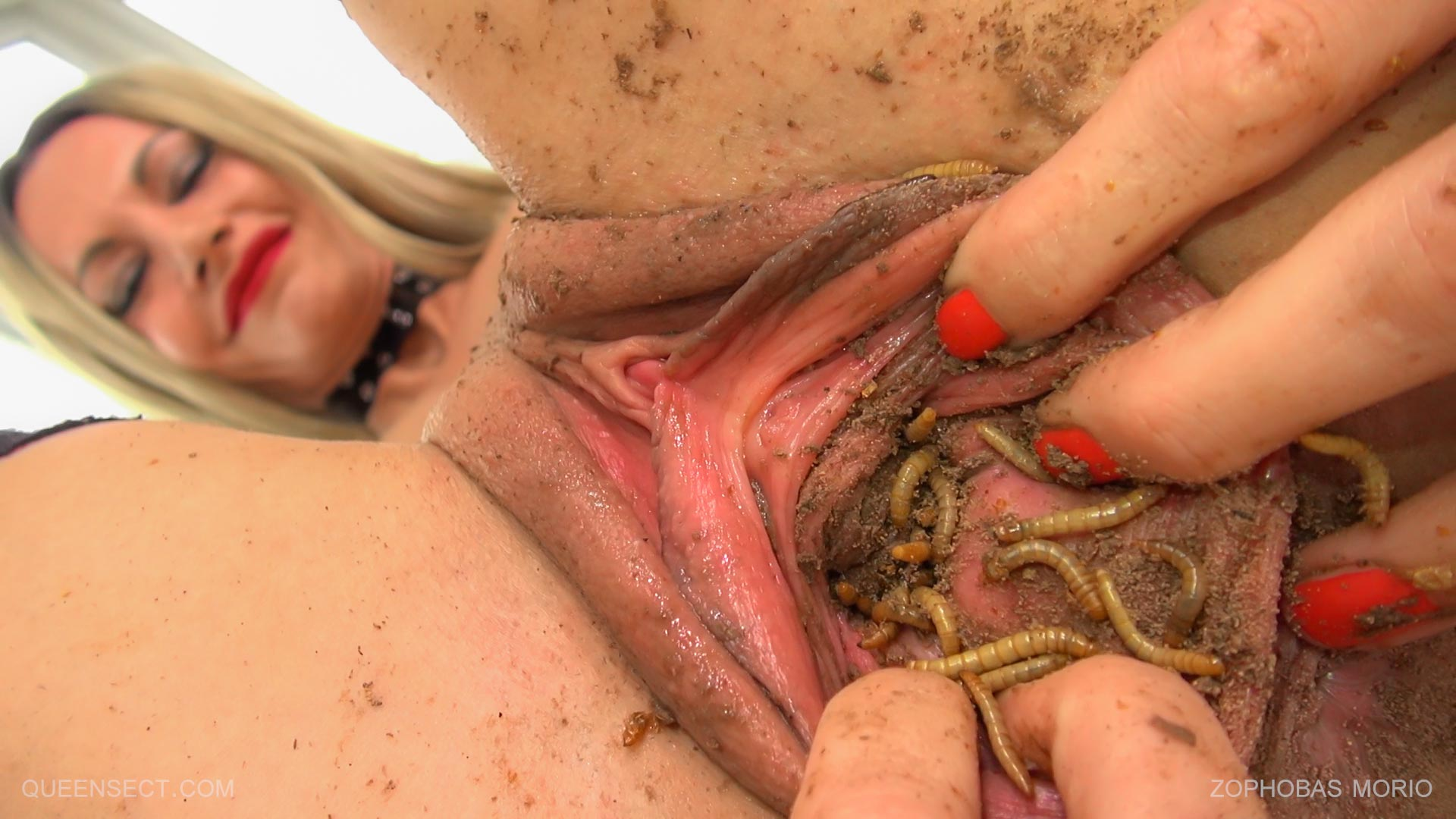 Bugs in vagina porn — photo 11